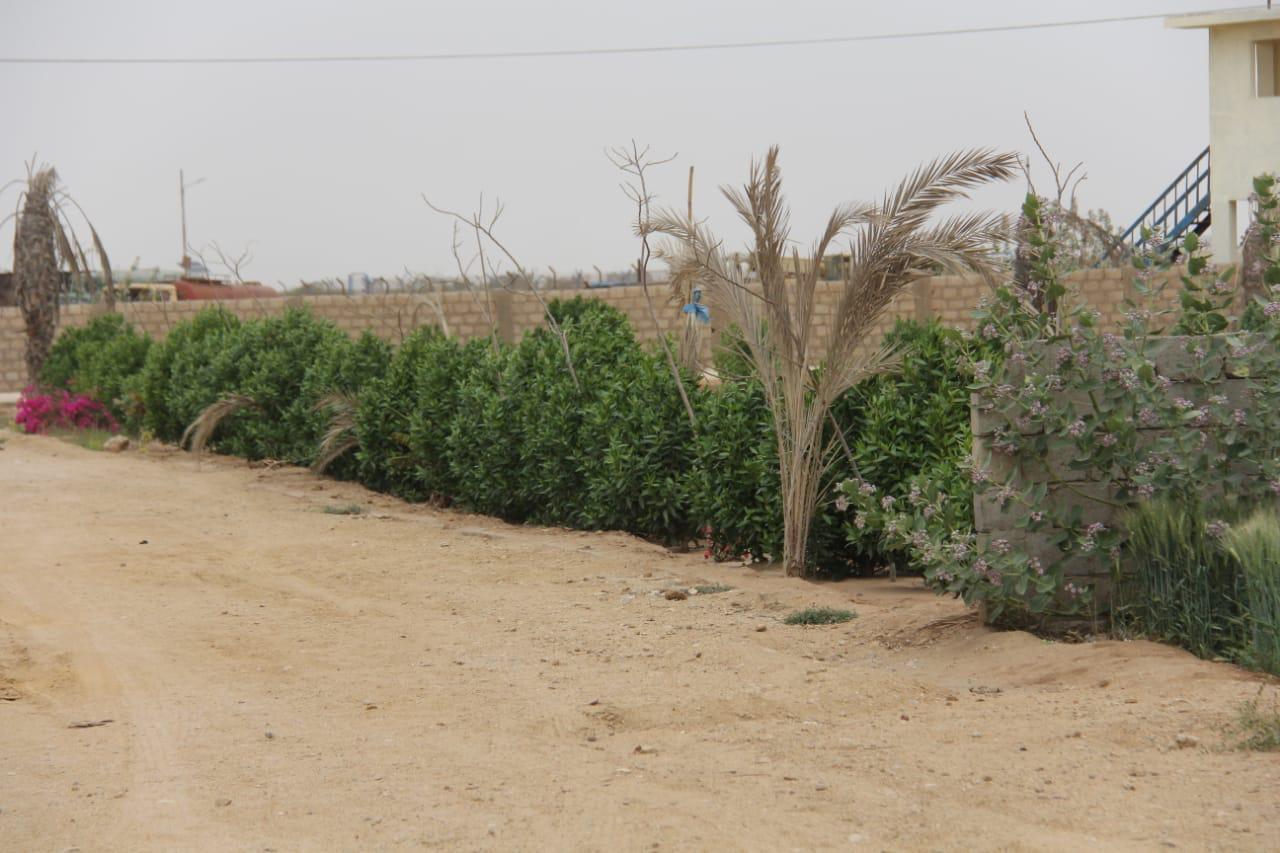 FARM HOUSES PLOTS : Land on installments near ASF DHA BAHRIA