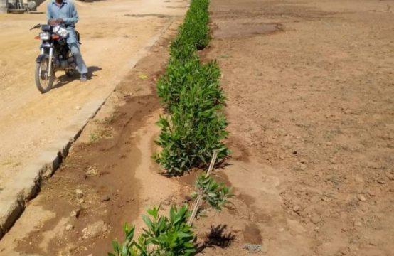FARM HOUSES : Plots and Land on installments near ASF